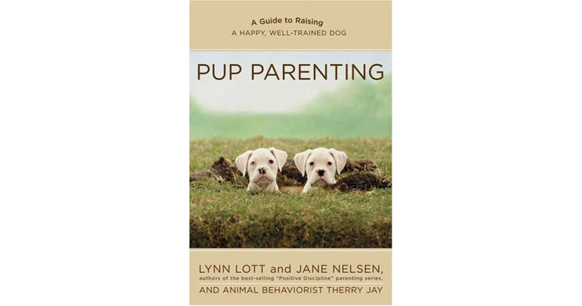Pup Parenting | Positive Discipline